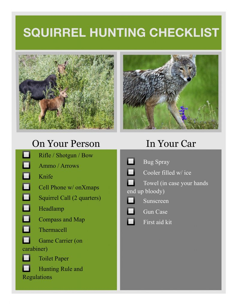 Squirrel Hunting Checklist